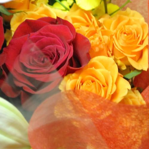 20121223flower8