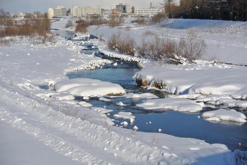 20121223makomanaii3