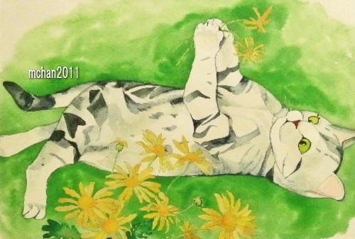 20130224pazukunflower