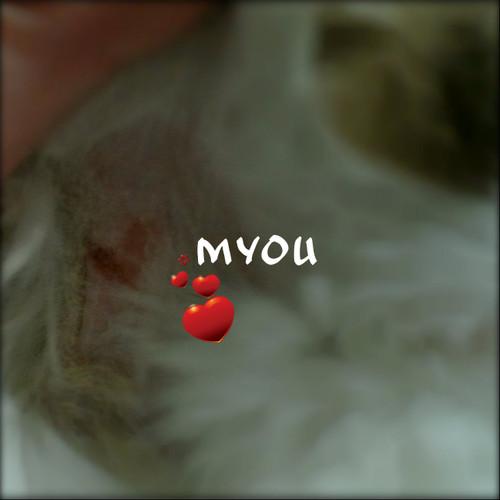20130917myouhart