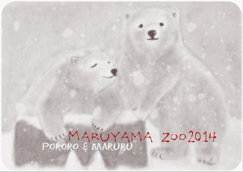 20140203pororomaruru1