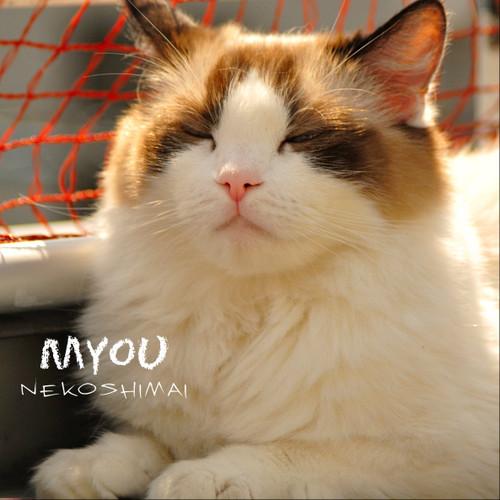 20150412v1myou3