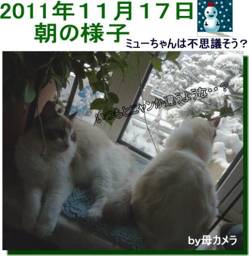 2011112103mmyou_2