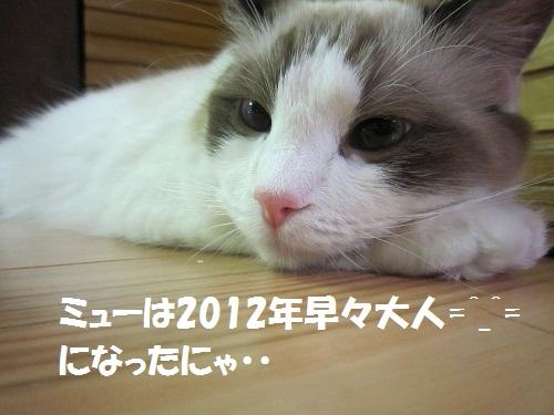 20120102myou
