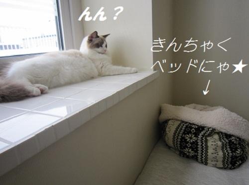 2012010302myou_2
